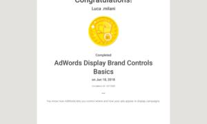 Ad Words Display Brand Controls